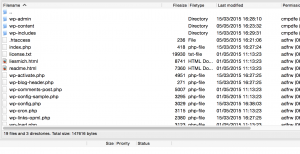 Verifizierungsdatei per FTP ins WordPress-Verzeichnis hochladen