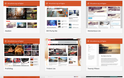 Wie du Premium WordPress Themes einfach und sicher updaten kannst