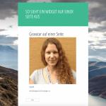 Wie du Sidebar Widgets in Seiten & Posts einfügen kannst
