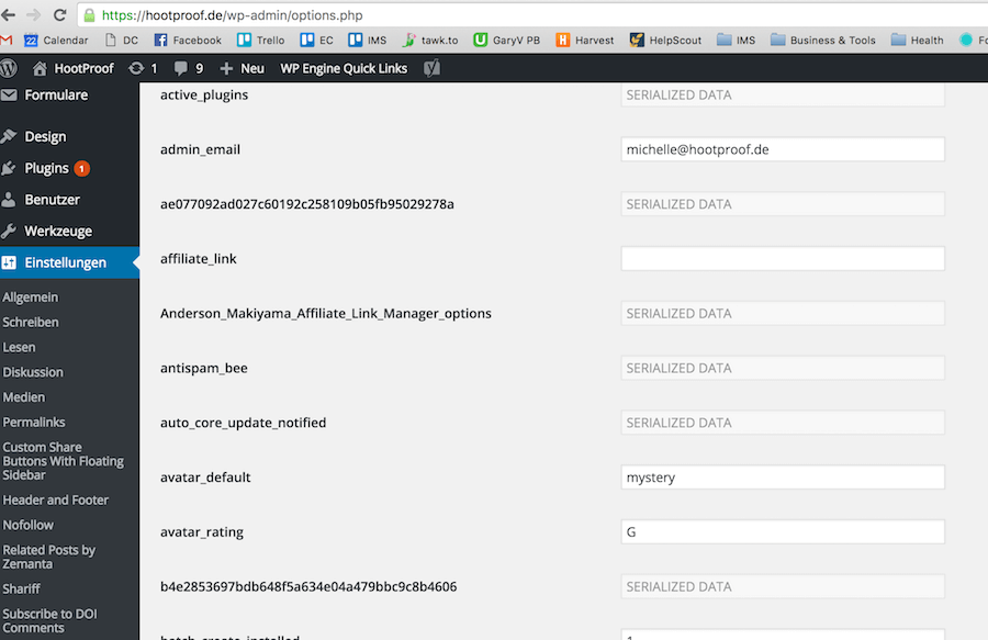 Datenbankoptionen WordPress