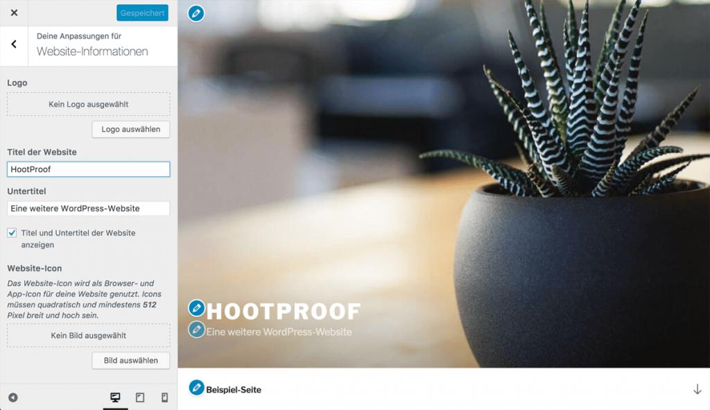 Screenshot des Theme Customizers mit den Icons aus WordPress 4.7
